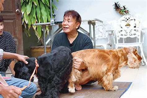help me mr mutt expert answers for dogs with problems books mating services bangkok post learning