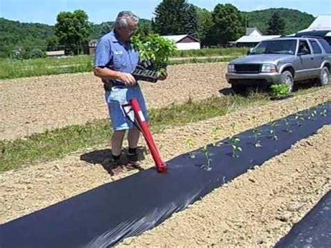 Held Seed Planter by Held Transplanter Wmv