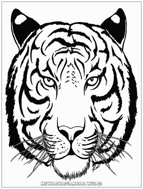 ivanildosantos gambar kepala macan