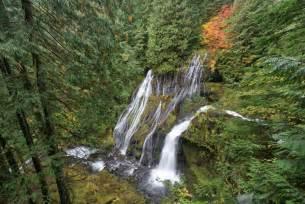 Foto frontera cascadas en el bosque de las con 237 feras
