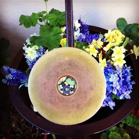 Garden Kaleidoscope Planter by Kaleidoscope Planter Pretty Things