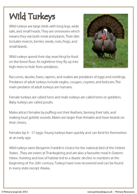 free reading comprehension worksheets for thanksgiving