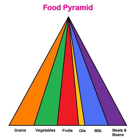 Blank Food Pyramid Template by Blank Food Pyramid Template Printable Food