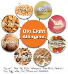 common food allergies causes of eczema and scalp eczema prime physique nutrition