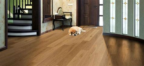 Best Wood Flooring For Dogs Best Flooring Options For Owners Esb Flooring