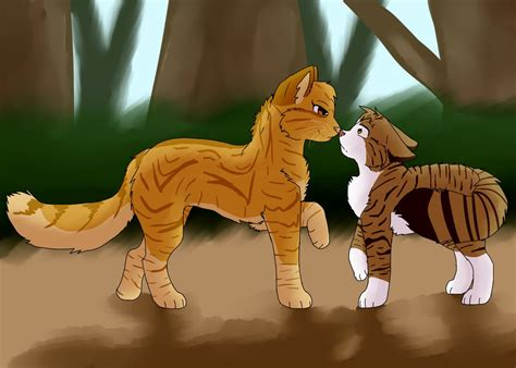 Cat In An X mothwing x leafpool by gabrielethefoxdog on deviantart