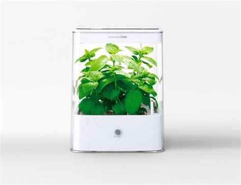 Garden Grow Box by Commercial Hydroponics Systems Small Garden Ideas