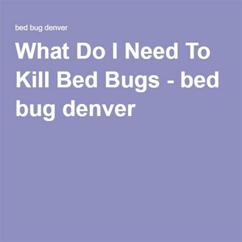 bed bugs denver 17 best images about bed bugs on pinterest allergies do you know what and need to