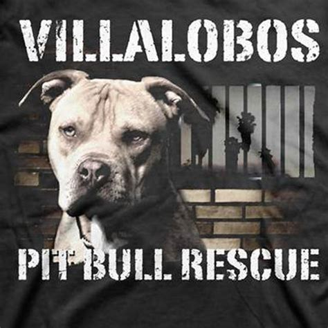 villalobos rescue 17 best images about pit bulls villalobos rescue center on monday