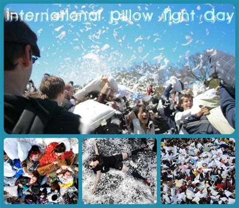 National Pillow Fight Day by Roofing Tips Davinci Roofscapes