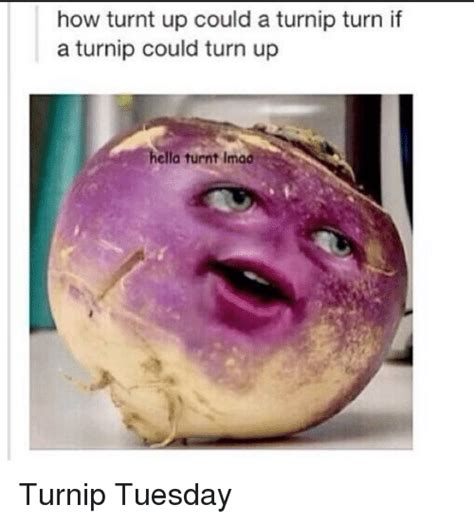 Turnt Up Meme - 25 best memes about getting turnt and turn up getting