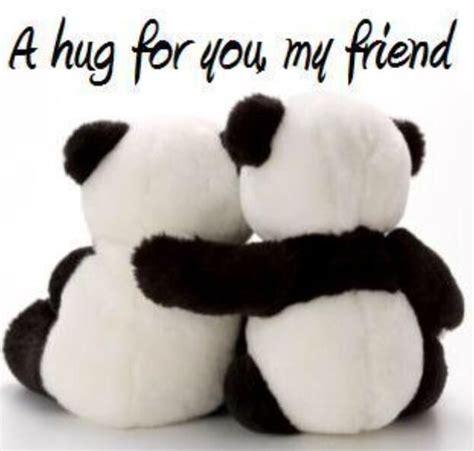 panda  happy hug day hug pictures hug quotes