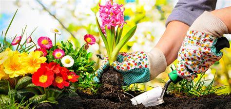 Garden Saga by Garden Saga