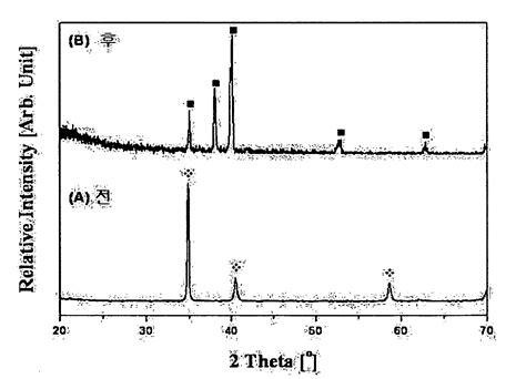 x pattern in c patent wo2010041882a2 생체용 다공성 티타늄 골지지체와 그 제조방법 google