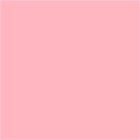 rosa color de colores fotos de rosa pictures to pin on page