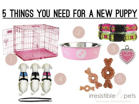 things you need to buy for a new house five things you need for a new puppy via irresistiblepets