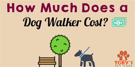 how much does a dog house cost how much does a dog walker cost toby s pet care