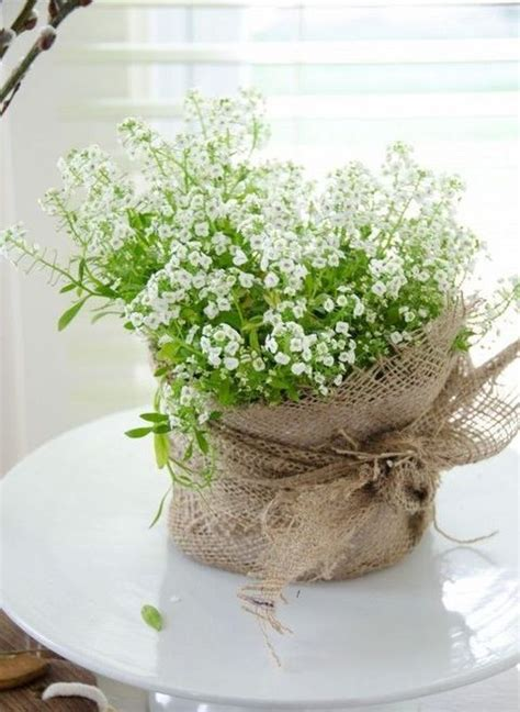Wedding Gift Plant by Best 25 Potted Plant Centerpieces Ideas On