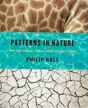 patterns in nature article philip ball science writer philip ball science writer