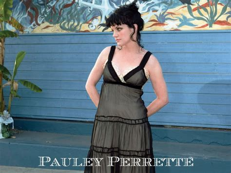 pauley perrette wallpapers wallpapersafari