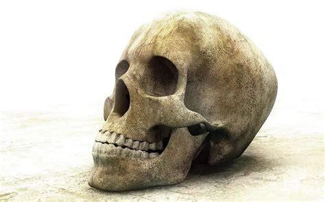 imágenes de jack calavera calavera humana im 225 genes de miedo y fotos de terror