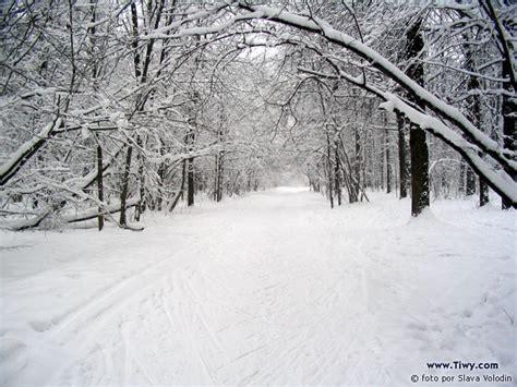 imagenes de invierno en rusia opiniones de invierno ruso