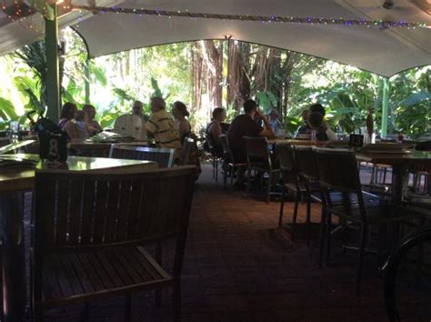 Botanical Gardens Restaurant Dsc 0882 Large Jpg Picture Of Botanic Gardens Restaurant Cafe Cairns Tripadvisor