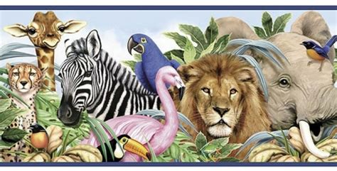 Animal Classification: Introduction Groupings Of Animals