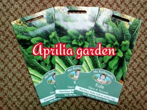 Benih Kale Nero Di Toscana Mr Fothergill S Original Packing kale nero di toscana aprilia garden