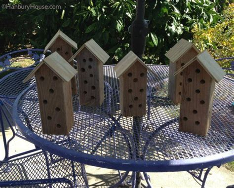 carpenter bee house 11 best carpenter bee traps images on bee