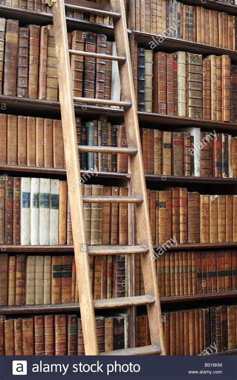 ladder propped up against a bookshelf of books in