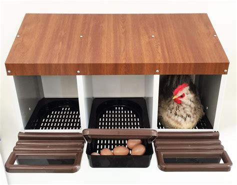 gabbie galline ovaiole attenzione prodotto momentaneamente non disponibile ebay
