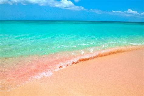 Beaches With Pink Sand Gallery For Gt Pink Sand Beach