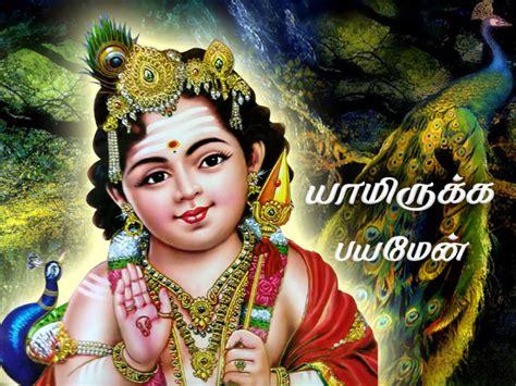 god murugan themes free download god murugan download gallery download cv letter and