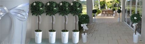 Wedding Aisle Tree Hire by Wedding Topiary Trees Wedding Ideas