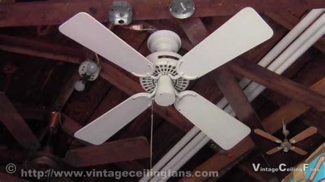 Cat In Ceiling Fan by Original Robbins Myers Inc Ceiling Fan Cat