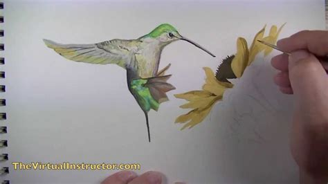 how to paint how to paint a bird with gouache youtube