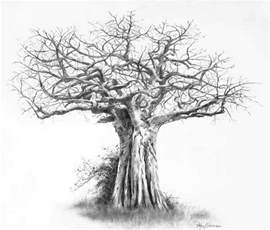 Pencil Drawing Of A Tree 25 Beautiful Examples From  sketch template