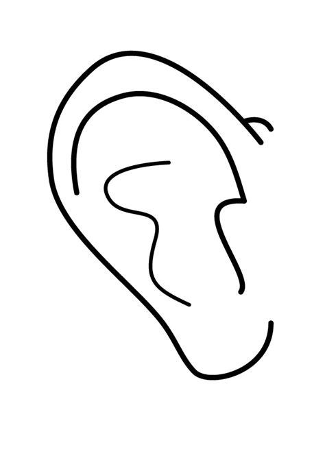 orejas de elefante para colorear menta m 225 s chocolate recursos y actividades para