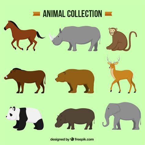 imagenes animales varios varios animales decorativos en dise 241 o plano descargar