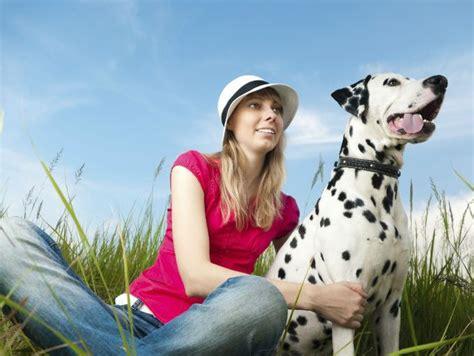 youtube abotonada de perro a una chica mujer abotonada con perro dalmata perro a para el hombre