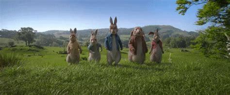 peter rabbit cast reviews release date story budget