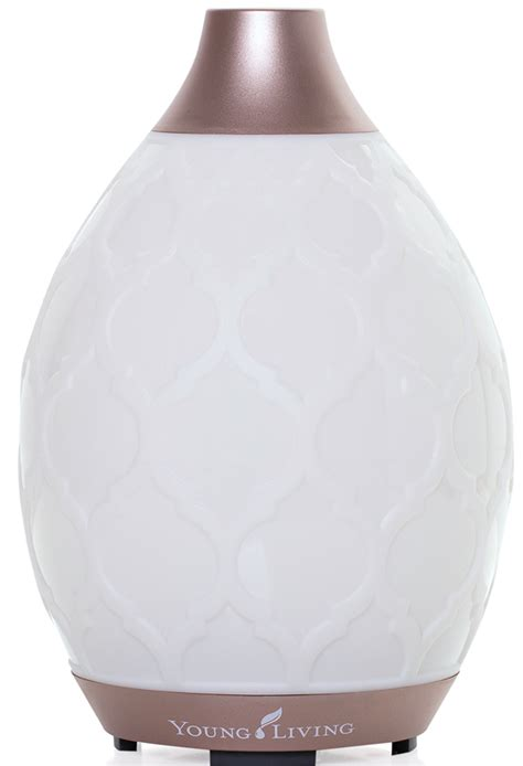 Living Desert Mist Diffuser hygge the yl way your essential guide to cozy comfort