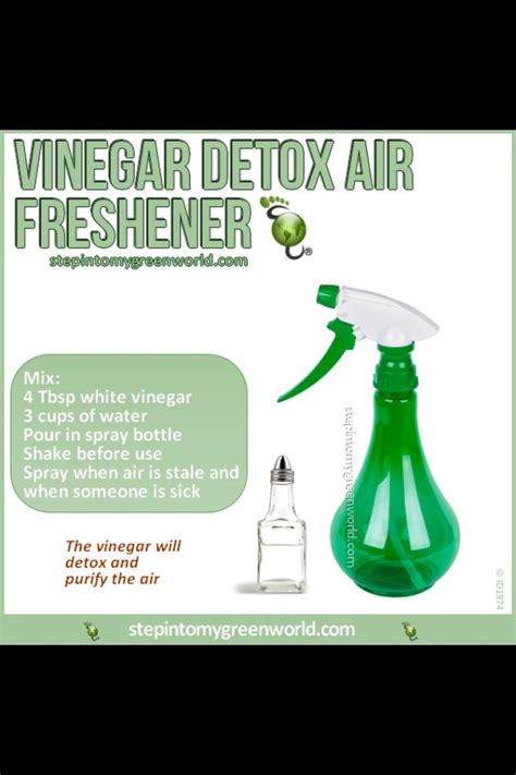 Detox Air Freshener by Air Freshener Vinegar Detox How To Mostly Cleaning