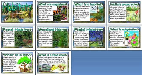 ideas for ks2 science club habitats buscar con google aborigen al art pinterest