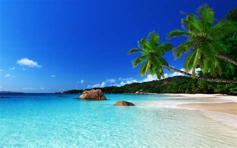 28 tropical beach backgrounds wallpapers images
