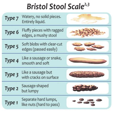 Bristol Stool Chart For by Bristol Stool Chart Bschart