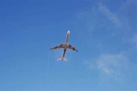 great deals on domestic international flights from 53 90 green vacation deals