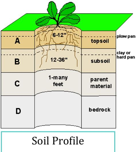 the gallery for gt topsoil subsoil and bedrock