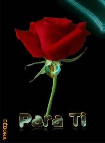 lmagenes de corazones en agua con rosas y aves gif animados de rosas rojas y corazones